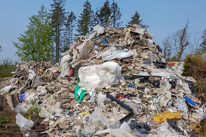 Over 600 tonnes of waste found illegally dumped in forest in Co Meath
