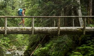 woman-hiking-outdoors-royalty-free-image-451932111-1560339404