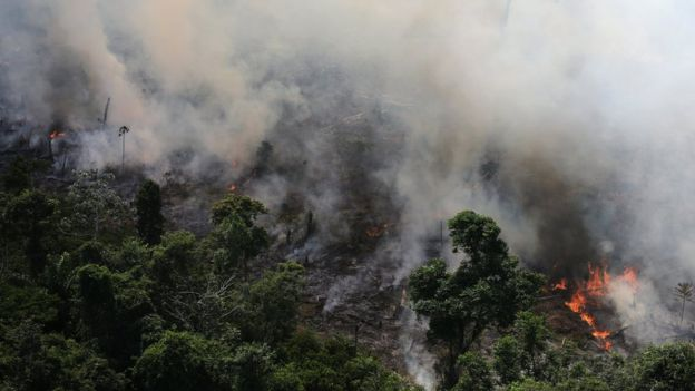 Amazon fires: Record number burning in Brazil rainforest – space agency