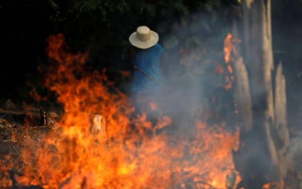 Amazon burning: Brazil reports record rainforest fires, president blames NGOs