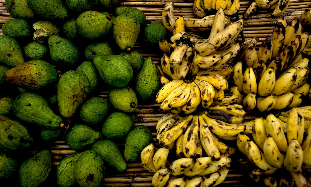 Fight climate change by preventing food waste