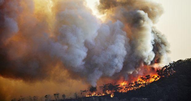 'A ghastly future': Leading scientists offer bleak prediction for civilisation